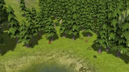 http://www.banishedventures.com/images/sigtuna/4/mushroom.jpg